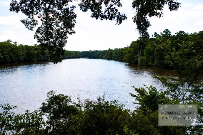Great Pee Dee River 1 WM